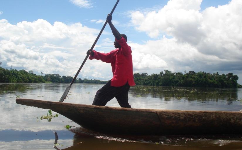 DRC Dreaming